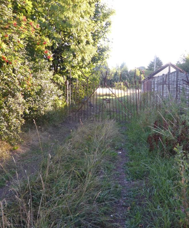 81 Glenavon road 015